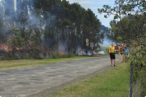 NBN news reader Lanis On The Beach fence line ..On Fires